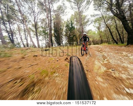 Pair of Man on mountain going fast on mountain bike in a forest. View from back of bicycle. Original point of view