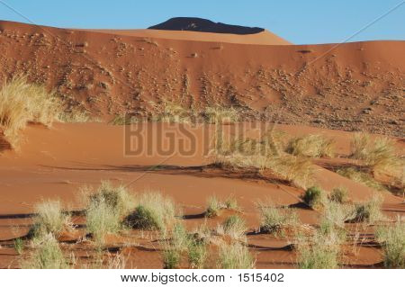 Landscapenamibiared Sand Dunes