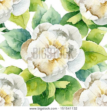Floral pattern with white peony. Watercolor seamless background