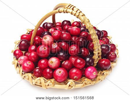 Cranberries with basket on white background closeup