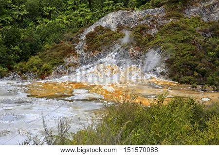 Orakei Korako Geothermal Valley Near Taupo In New Zealand