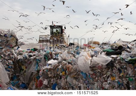Truck managing household garbage on a landfill waste site