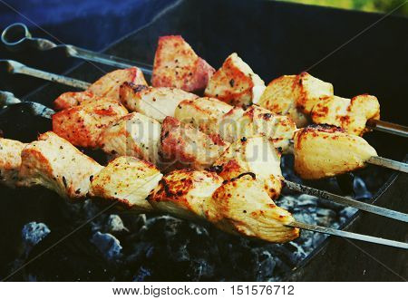 Shashlik meat barbecue cooking on hot coals