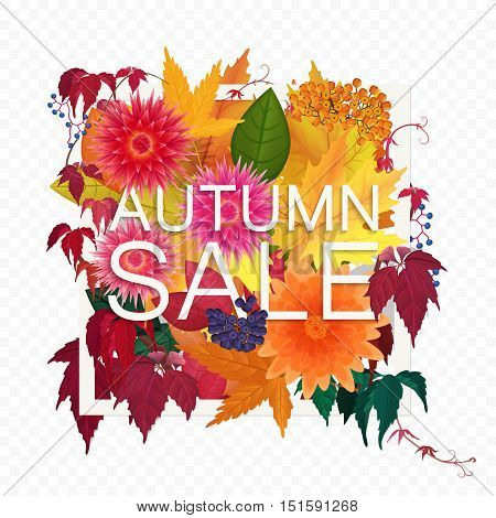 Autumn sale discount banner on the transperant alpha background. Modern style autumn Poster with golden orange foliage leaves, flowers and berries