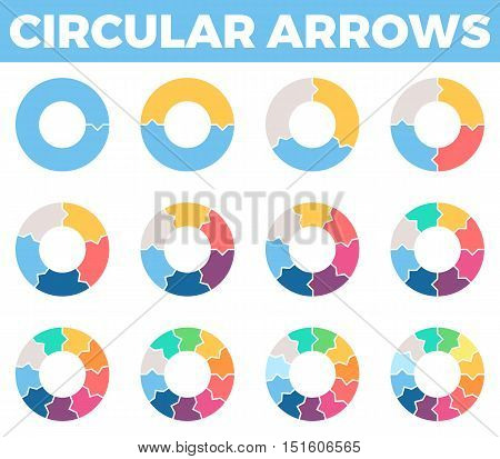 Business infographics. Circular arrows with 1 - 12 steps, parts. Vector design elements.