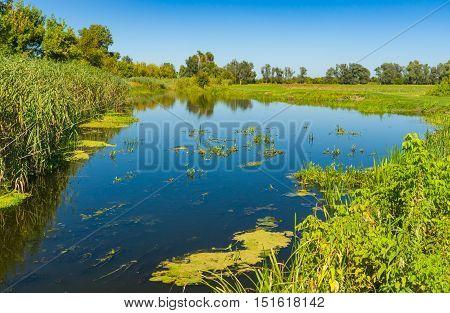 Peaceful landscape with small river Merla at summer season Poltavskaya oblast Ukraine