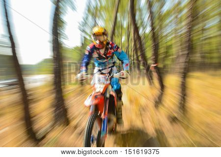 forest trails Enduro race .enduro racing in the forest.