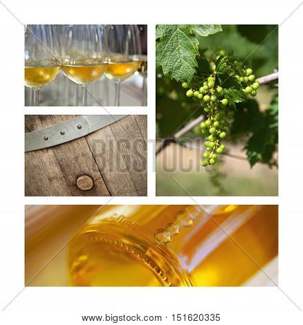 Winery Elements On A Collage