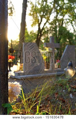 big spiderweb on an old abandoned grave