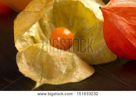 Physalis - Fruit With Husk