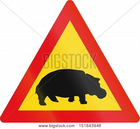 Temporary Road Sign Used In The African Country Of Botswana - Hippos