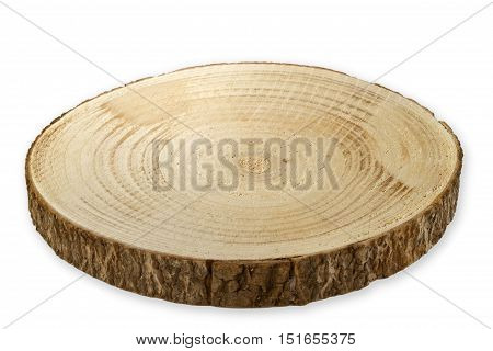 Tree cut from Birch - Breadboard isolated on white background