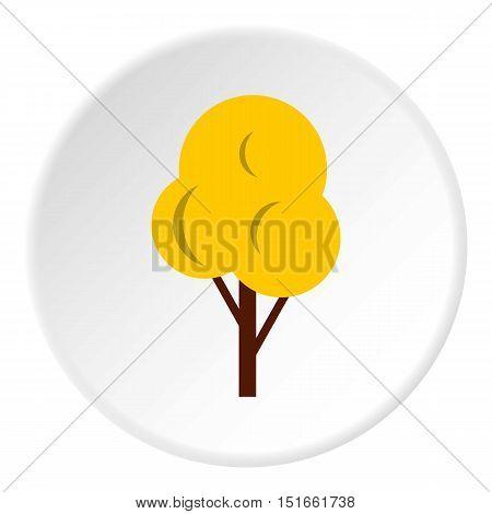 Autumn tree icon. Flat illustration of autumn tree vector icon for web