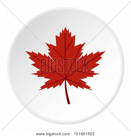 Red autumn leaf icon. Flat illustration of red autumn leaf vector icon for web