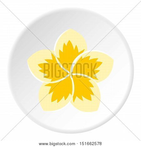 Frangipani flower icon. Flat illustration of frangipani flower vector icon for web
