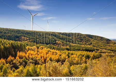 wind farm with forest in autumn against a sunny sky