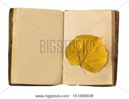 A photo of an old book, open, with a blank page for copyspace, shot from above with a yellow autumn leaf