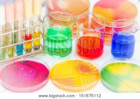 Ph Buffer For Use Prepare The Biochem For Identified Pathogen In Microbiology Room.