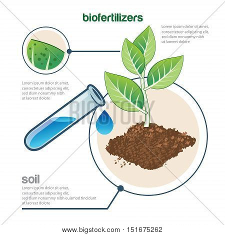 plant and fertilizer growing vector illustration poster template