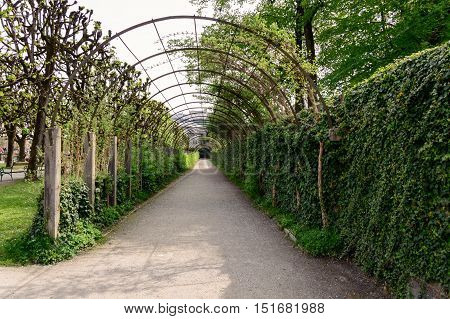 Salzburg Austria - April 29 2015: Pergola in Mirabell Gardens. Salzburg is renowned for its baroque architecture and was the birthplace of Mozart. It is an Unesco World Heritage Site.
