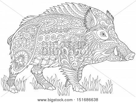 Stylized wild boar (razorback warthog hog pig). Freehand sketch for adult anti stress coloring book page with doodle and zentangle elements.