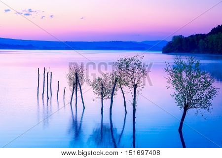 Beautiful landscape with a lake and mountains in the background and trees in the water. Blue and purple color tone