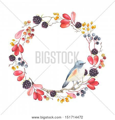 Wreath with bird Blue tail, branches Barberry, Blackberry, berry and leaves. Vector floral autumn illustration on white background.