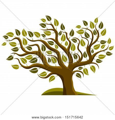 Vector illustration of stylized branchy tree isolated on white background.
