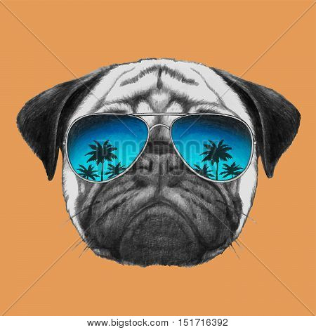 Hand drawn portrait of Pug Dog with mirror sunglasses.