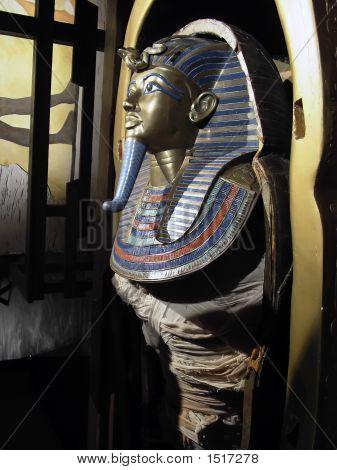Tutankhamen'S Mummy
