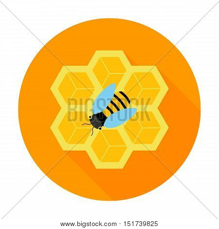Honeycomb with bee circle icon. Vector illustration of honeycomb with bee on a orange.