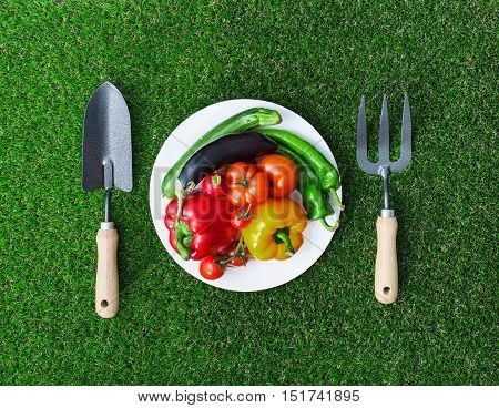 Healthy Eating And Horticulture