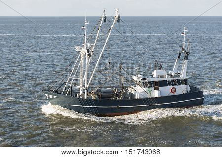 Fishing boat in the morning light on the UNESCO protected Dutch Wadden Sea near Harlingen in the Netherlands