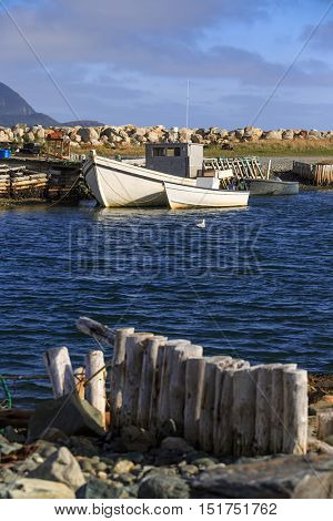 Traditional fishing boats moored in the town of Ferryland, Newfoundland, Canada.