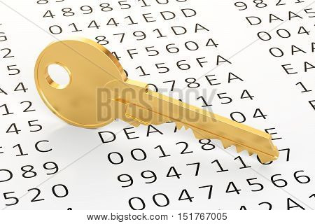 Encryption concept with codes and key 3D rendering
