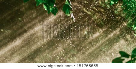 Rain through sunshine background. Sun shower water spray
