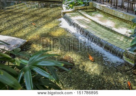 A stream of waret falling from a pond stairs