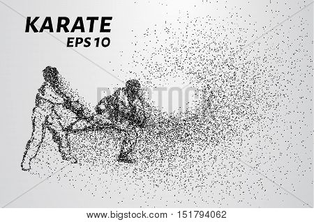 Karate of particles. Sparring karate consists of small circles. Vector illustration