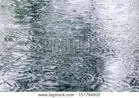 Raindrops And Water Circles On Flooded Pavement