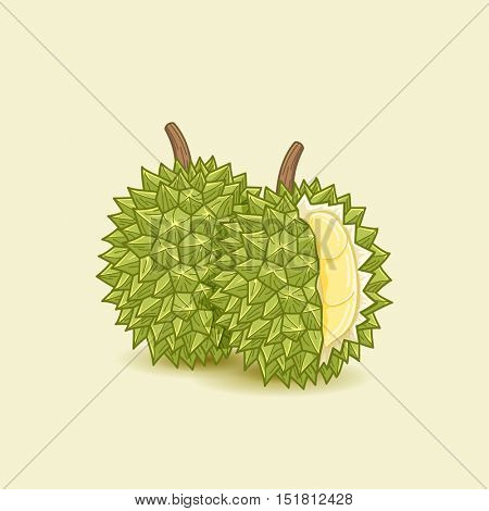 Durian fruit illustration