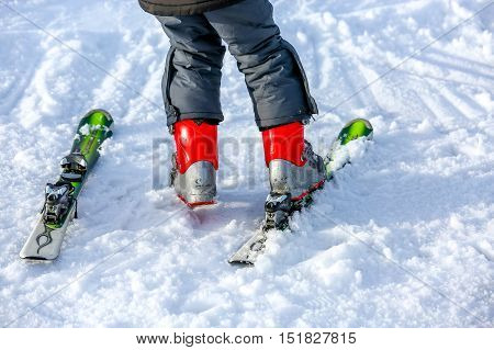 Gerardmer, France - Feb 16 - Young Child Putting On His Ski In Snow During The Annual Winter School