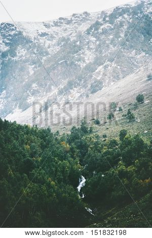 Mountains Coniferous Forest and river Landscape aerial view Travel serene scenic view moody weather