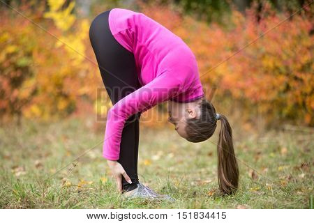 Sporty beautiful young woman practicing yoga, doing uttanasana, intense stretch pose, Standing forward bend or head to knees pose, working out outdoors on autumn day. Full length, side view