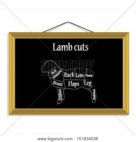 Lamb Cuts Vector