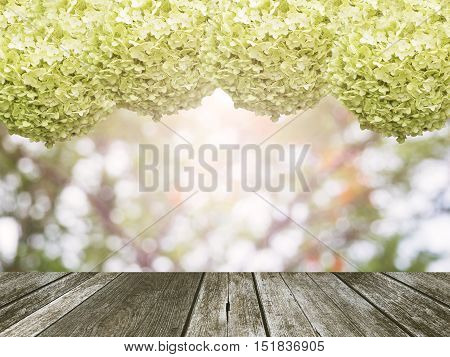 Hydrangea frame with wood plank for natural background