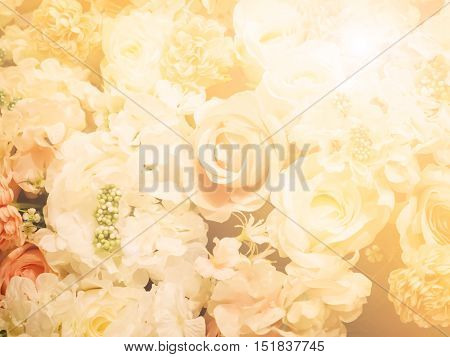 Blur and soft abstract rose wedding background