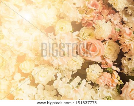 Blur and soft abstract rose wedding for background