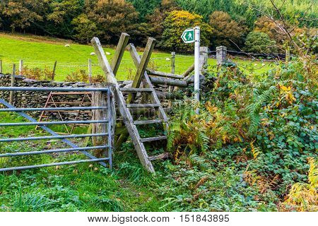Typical ladder stile over dry stone wall Snowdonia National Park Gwynedd Wales United kingdom.