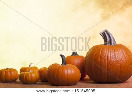 Assorted Pumpkins on a Blurred Autumn Background sitting on Burlap