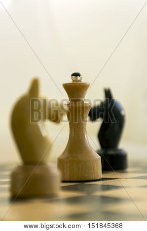 Chess wooden figures Queen horses black and white standing on a chess Board combination Board game